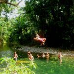 Cape Tribulation Guided 2 Day Tour